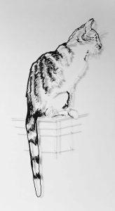 Amimono – Madame le Chat