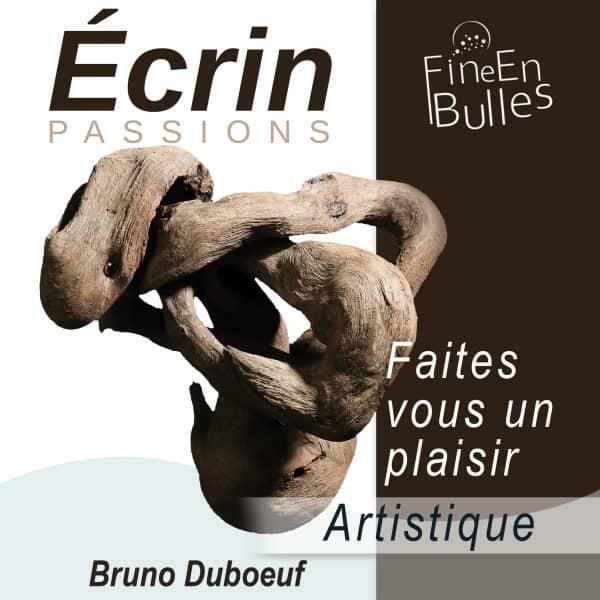 ecrins-artistique-Bruno Duboeuf